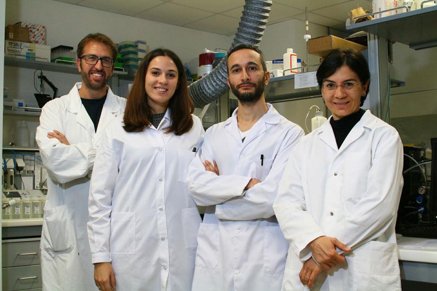 team-biosan-lab