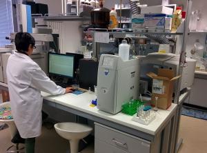 dipendente-lavoro-biosan-lab